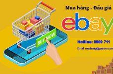 Đấu giá Ebay là gì? Cách đấu giá trên Ebay hiệu quả