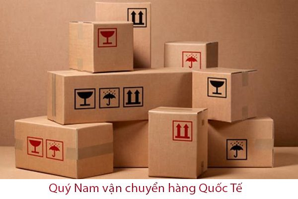 Nhu cầu vận chuyển hàng hóa ra nước ngoài và từ nước ngoài về Việt Nam của ngày càng tăng cao