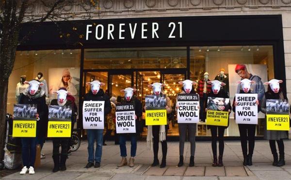 Forever21, lựa chọn của rất nhiều các bạn trẻ năng động.