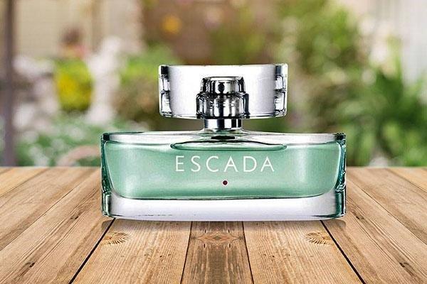 Escada có mùi hương ngọt ngào và tươi mới