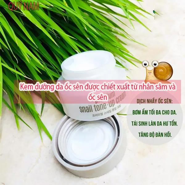Kem dưỡng da ốc sên được chiết xuất từ nhân sâm và ốc sên